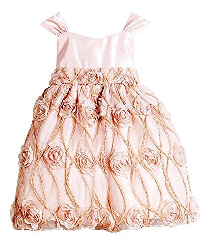 Petal Pink Strap Dress (Sweet Kids Baby Girls' Shabby Satin Rose Flower Girl Dress Petal Pink 12M M B476)