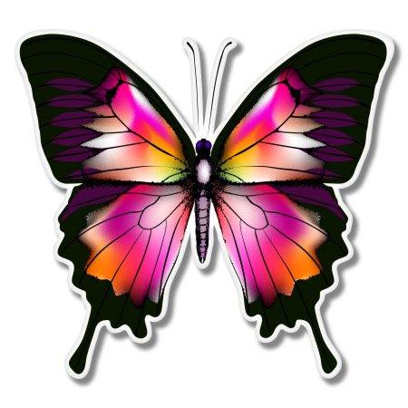 Beautiful Butterfly Colorful Vinyl Sticker - Car Window Bumper Laptop - SELECT SIZE