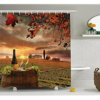 Amazon.com: Ambesonne Winery Decor Collection, Vineyard in