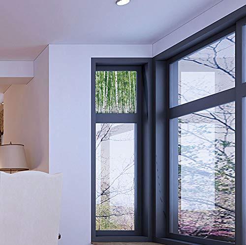 C COABALLA Privacy Window Film Decorative,Birch Tree,for Glass Non-Adhesive,Fresh Green Leaves Summer Forest Rural Landscape Lush,17''x24'' ()