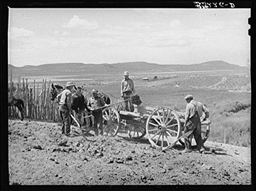 Members of FSA (Farm Security Administration) cooperative manure spreader placing manure on farmland. Box Elder County, Utah ()