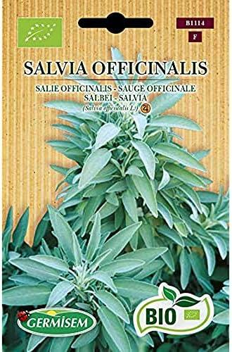 Germisem Organisch Salvia Officinalis Salie Zaden 1 g