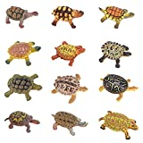 Liberty Imports Realistic Sea Turtle Miniature Figurines - 12 Unique Turtles Detailed and Hand Painted Reptile Toys for Kids