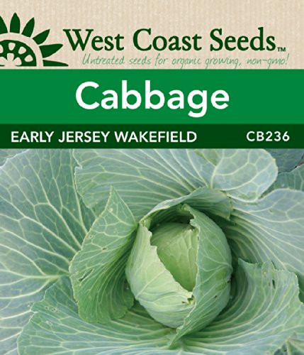 Cabbage Seeds - Early Jersey Wakefield for sale  Delivered anywhere in Canada