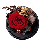 Vincent-Chen-Handmade-Preserved-Flower-Real-Rose-Red-with-Music-Box