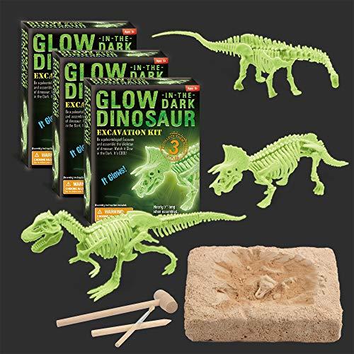 XX Dinosaur Dig Excavation Kit for Kids Glow in The Dark 3 Different Dino Assembly Bone Model 3 Packs