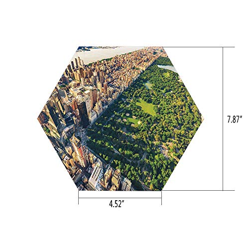 PTANGKK Hexagon Wall Sticker,Mural Decal,United States,Central Park from The Air Surrounded by Buildings Downtown View Decorative,Fern Green Sand Brown,for Home Decor 4.52x7.87 10 -