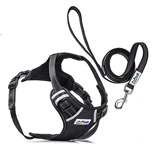 Adjustable No Pull Reflective Harness Handle, D-Ring Leash Small Medium Large Sized Dog (Large)