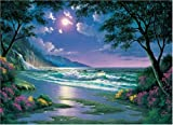 Moonlight Beach Jigsaw Puzzle