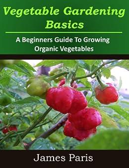Vegetable Gardening Basics Beginners Vegetables ebook product image