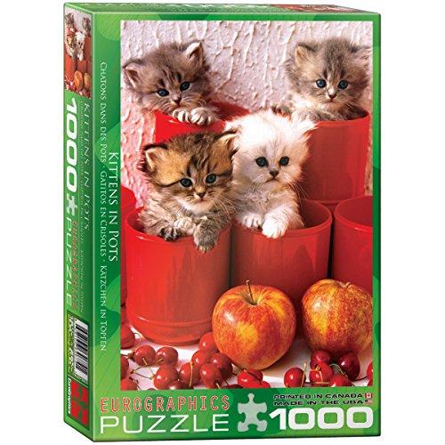 1000 piece pot puzzle - 2