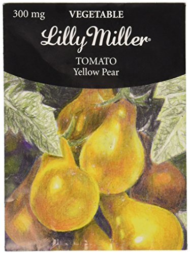 Lilly Miller Tomato Seed, Yellow/Pear (Ferry Morse Tomato Seed)
