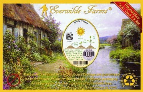 250 Purple Vienna Kohlrabi Seeds Everwilde Farms Mylar Seed Packet