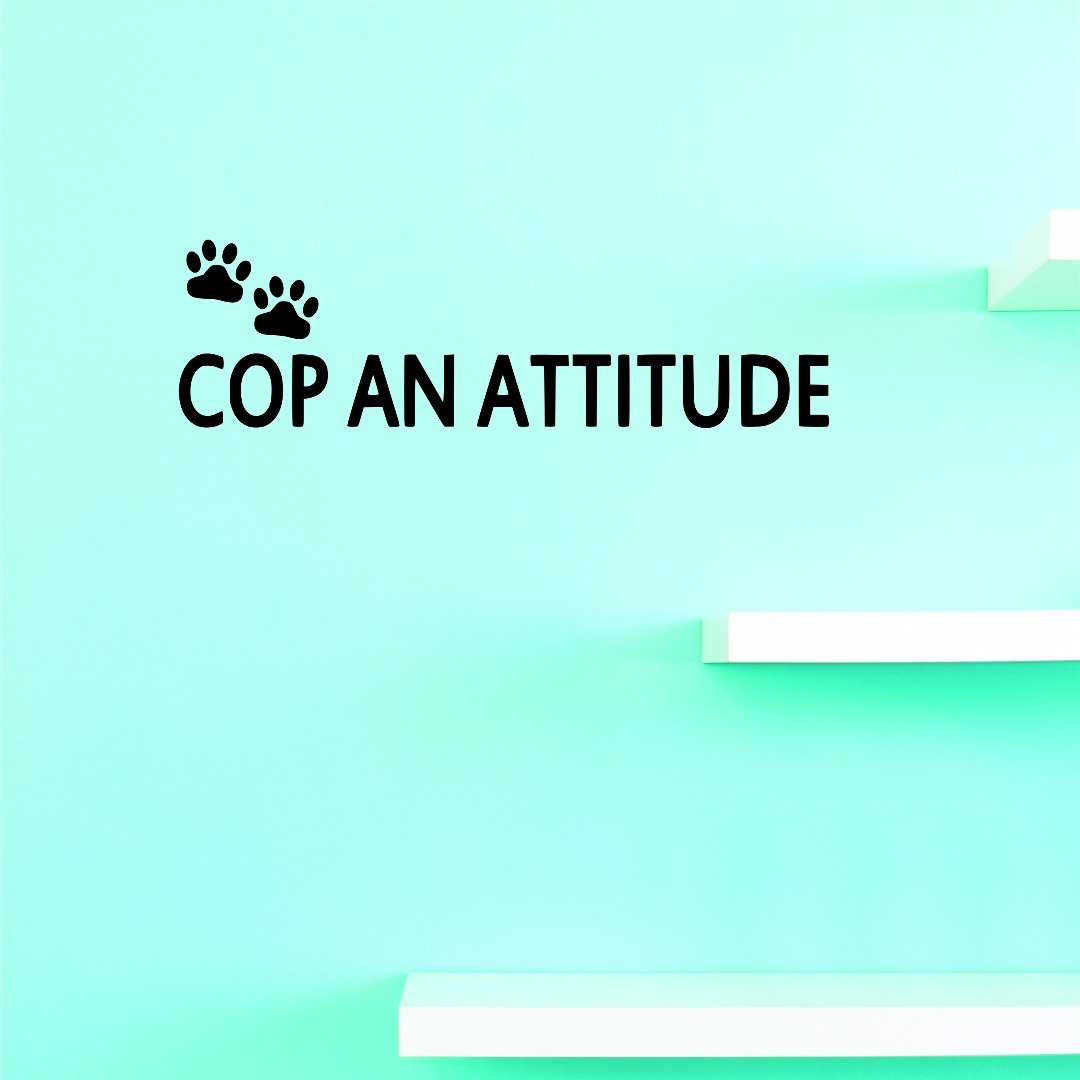 Design with Vinyl JER 1353 1 Vinyl Wall Decal Cop an Attitude 8X20 Black 8 x 20