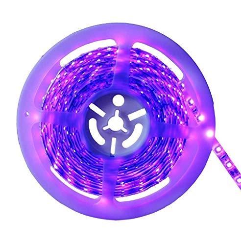 AMARS 5M/16.4FT 300 LED 24W Black Lights Strip UV Blacklight Fixture, DC12V Ultraviolet UV Purple Lighting (Indoor and Dry Environment Use) -