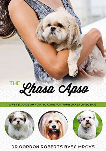 The Lhasa Apso: A Vet's Guide on How to Care for Your Lhasa Apso