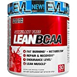 Evlution Nutrition LeanBCAA, BCAAs, CLA and L-Carnitine, Stimulant-Free, Recover and Burn Fat, Sugar and Gluten Free (Fruit Punch, 30 Servings)