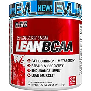 Evlution Nutrition LeanBCAA BCAA CLA And L-Carnitine Recover And Burn Fat Sugar And Gluten Free 30 Serving (Fruit Punch)