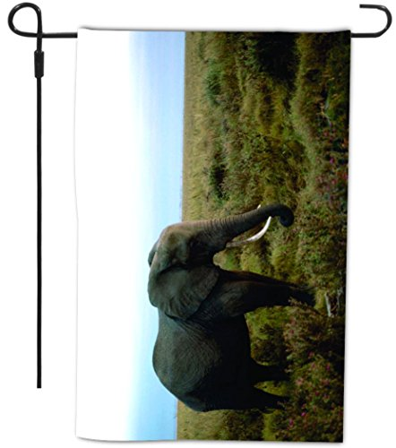 Full Bleed Photo - Rikki Knight African Elephant Design Decorative House or Garden Full Bleed Flag, 12 by 18-Inch