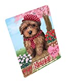 Doggie of the Day Rosie 25 Cent Kisses Yorkipoo Dog Blanket BLNKT125868 (50x60 Sherpa)