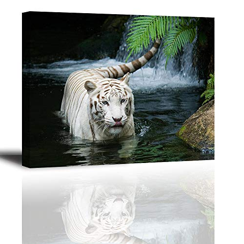 (White Tiger Picture Decor for Bedroom, PIY Gorgeous Wall Art of Ivory Tigress in Pond, Wild Life Theme Canvas Painting Prints on Canvas (1