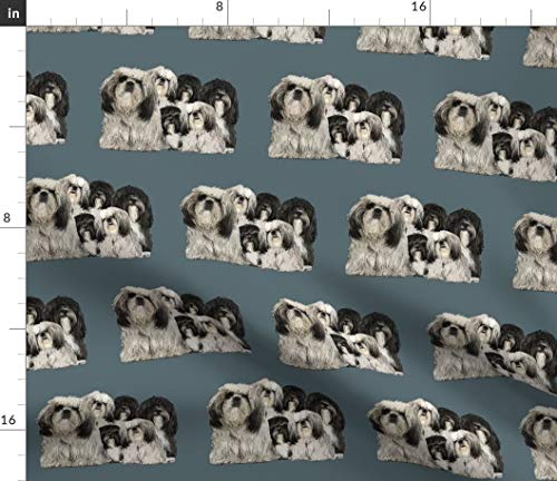 (Tibet Fabric - Shih Tzu Dogs Miscellaneous Toy Dog Non Sporting Terriers Print on Fabric by The Yard - Petal Signature Cotton for Sewing Quilting Apparel Crafts Decor)
