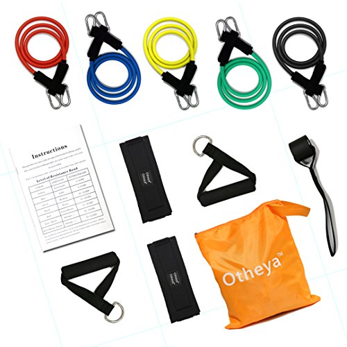Otheya Resistance Band Set with Door Anchor,Ankle Strap,Exercise Chart and Resistance Band,Exercise Equipment For Full Body Workout (12pcs)