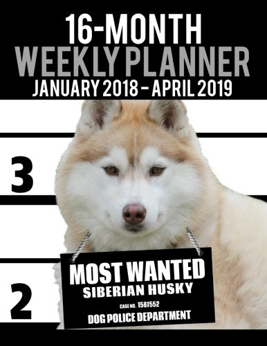 """Price comparison product image 2018-2019 Weekly Planner - Most Wanted Siberian Husky: Daily Diary Monthly Yearly Calendar Large 8.5"""" x 11"""" Schedule Journal Organizer (Dog Planners 2018-2019) (Volume 35)"""