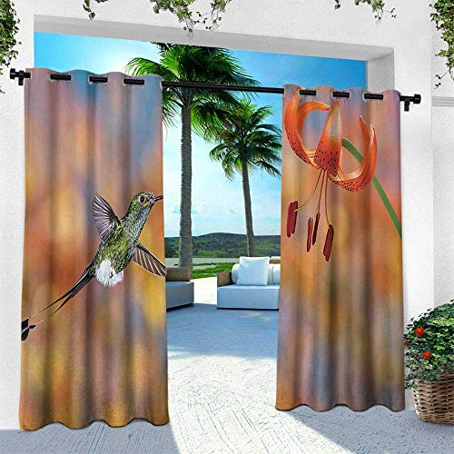 Hummingbird, for Patio Light Block Heat Out Water Proof Drape,The Booted Racket Tail Feeding Nectar from Tiger Lily Blur Background Photo, W120 x L108 Inch, Orange Green (Drapes Tiger Lily)