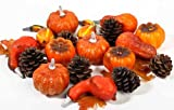 Assorted Decorative Fall Artificial Pumpkins and Gourds with Natural Pine Cones for Table Scatters (Bag of Approx 18 Pieces)