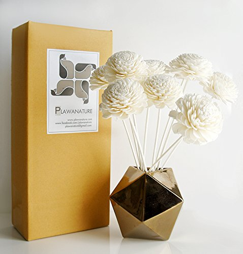 Exotic Plawanature Mix 4 Set of 42 Popular Sola Wood Flower with Reed Diffuser for Home Fragrance Aroma Oil. by Exotic Aroma (Image #3)