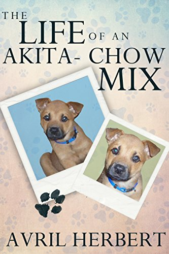 Book cover image for The Life Of An Akita Chow Mix