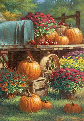 Toland Home Garden Farm Pumpkin 28 x 40 Inch Decorative Rustic Fall Autumn Harvest Flower House Flag Pumpkin Banner Flag