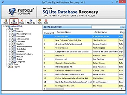 Amazon com: SysTools SQLite Recovery (Email Delivery-No CD)