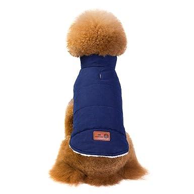 Ropa para Mascotas,Dragon868 Caliente Simple Mascota Ropa suéter para Perro Mascota Cachorro: Amazon.es: Ropa y accesorios