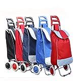 PAffy Foldable Shopping Trolley Bag (Random Color - Red/Black/Blue)