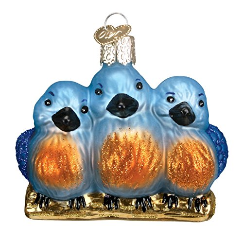 Old World Christmas Ornaments: Feathered Friends Glass Blown Ornaments for Christmas Tree