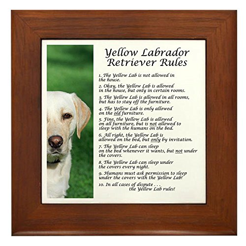(CafePress - Yellow Lab Rules Framed Tile - Framed Tile, Decorative Tile Wall Hanging)
