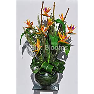 Silk Blooms Ltd Artificial Orange Bird of Paradise and Bamboo Floral Arrangement w/Glass Fishbowl