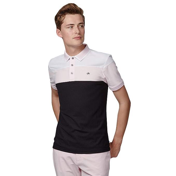 Calvin Klein 2019 Arinox - Polo para Hombre: Amazon.es: Ropa y ...
