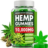 Omega 3, 6 & 9 Gummies 10000 MG - Premium Herbal Extract - Pain, Stress & Anxiety Relief - Made in The USA - 100% Natural & Safe Pain Relief Gummies - Best Mood & Immune Support.