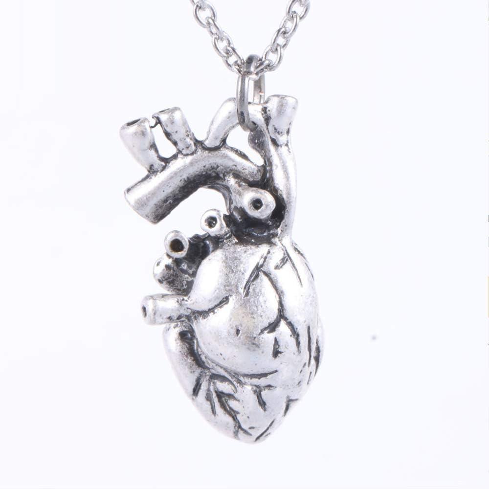 Collar de plata con colgante de corazón de anatomía y anatomía, collar de corazón de anatomía y ciencia, biología, collar de plata envejecida para mujer