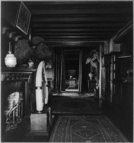 HistoricalFindings Photo: Interior,Sagamore Hill,fireplace,water buffalo head,antelope,T Roosevelt,NY,1870