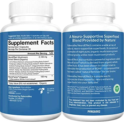 Paleovalley: NeuroEffect - Advanced Wellness and Immune Supplement - 120 Veggie Capsules - Natural Support for Focus, Memory, Stress Relief, and Energy - Flavorless - 8 Organic Mushroom Blend 2
