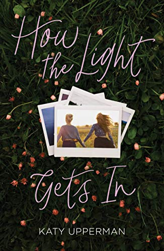 Book Cover: How the Light Gets In
