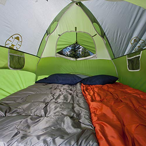 Coleman 6-Person Dome Tent for Camping   Sundome Tent with Easy Setup