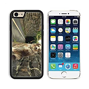 Dog Tunnels Break Walls Pets Animal Apple iPhone 6 TPU Snap Cover Premium Aluminium Design Back Plate Case Customized Made to Order Support Ready Liil iPhone_6 Professional Case Touch Accessories Graphic Covers Designed Model Sleeve HD Template Wallpaper