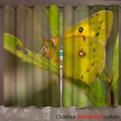 WinfreyDecor 0utdoor Curtains for Patio Waterproof Orange Sulphur Butterfly W108 x L84 -