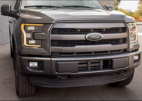 Ford Front Grille Tailgate Emblem,Oval 9X3.5,2004-2014 Ford F150 Black Explorer Emblem Replacement Tailgate Decal Badge Nameplate Also Fits for F250 F350,11-14 Edge,11-16 Explorer,06-11 Ranger Oval 9X3.5 Carhome01