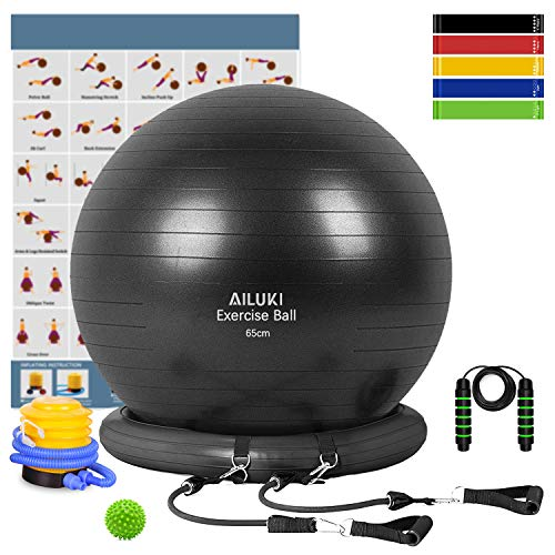 Yoga Ball, 65cm Exercise Ball Fitness Balls Stability Ball Anti-Slip & Anti- Burst for Yoga,Pilates, Birthing, Balance…